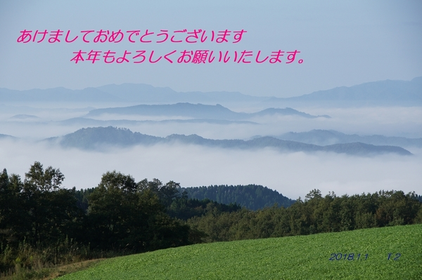 DSC07510.22.jpg